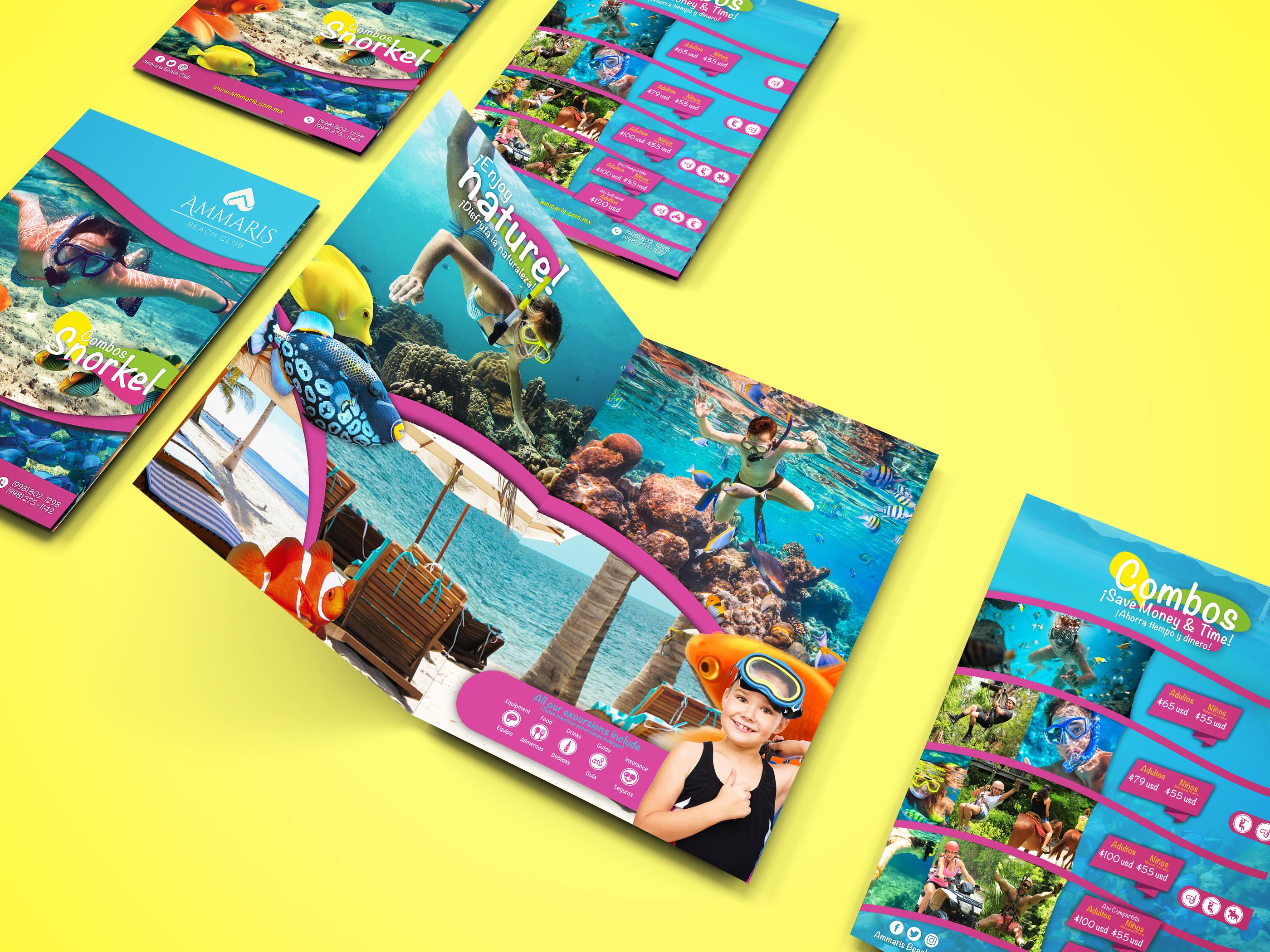 Ammaris diseño de folleto